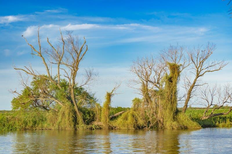 Река Parana, San Nicolas, Аргентина стоковые изображения