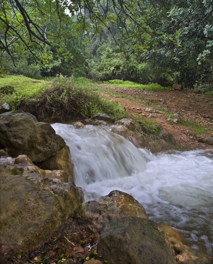 река parod Израиля стоковые изображения rf