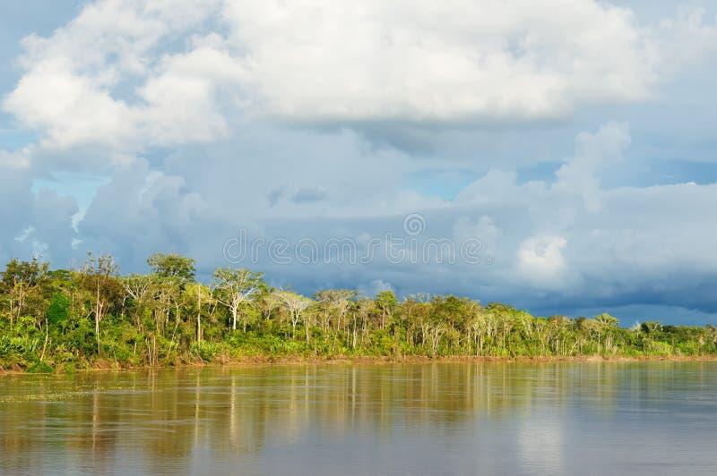 река peruvian maranon ландшафта amazonas стоковое изображение rf