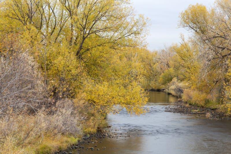 Река Poudre la тайника стоковая фотография rf