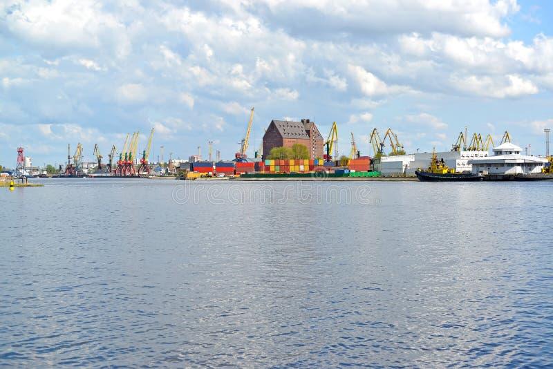 Река Pregolya обозревая морской порт торговлей Калининграда стоковые фотографии rf