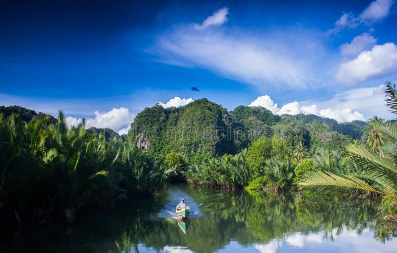 Река Pute в Индонезии стоковые изображения rf