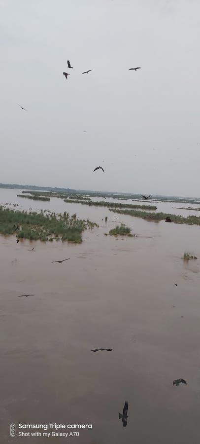 Река Ravi lahore стоковое фото rf
