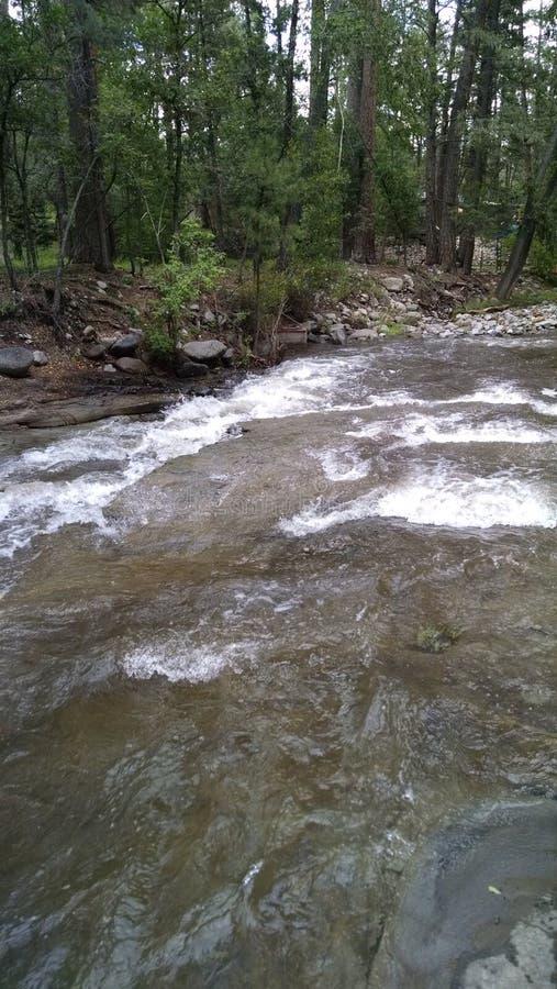 Река Ruidoso стоковое изображение rf