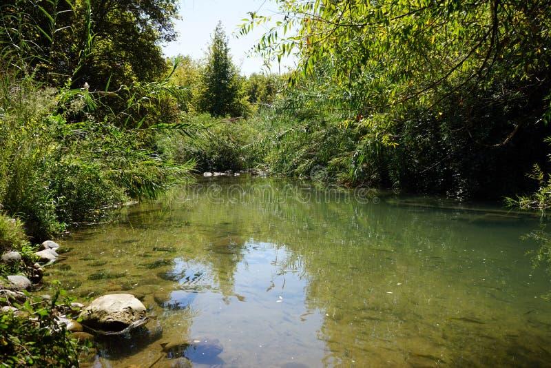 Река Senir стоковое фото rf