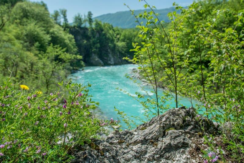 Река Soca в весеннем времени стоковое фото