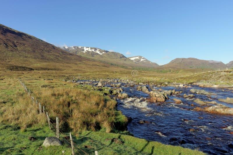 Река Spey к западу от моста Garva на зоре, Шотландия весной стоковые фото