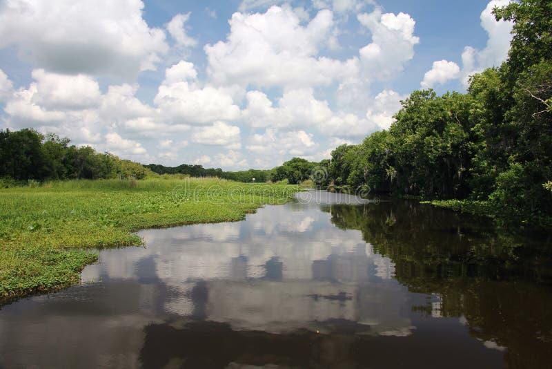 Река St. Johns стоковое фото rf