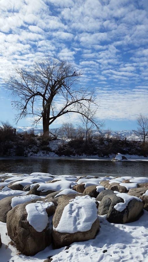 Река Truckee в зиме стоковые изображения rf