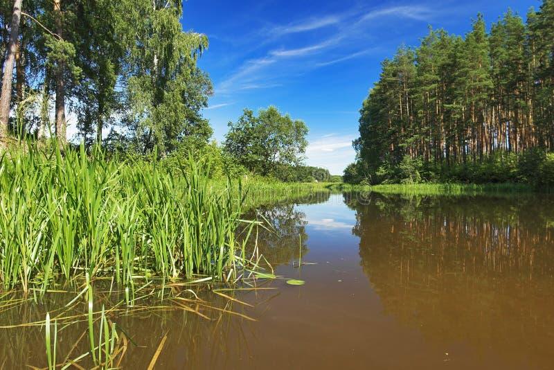 река volga подпора стоковые изображения rf