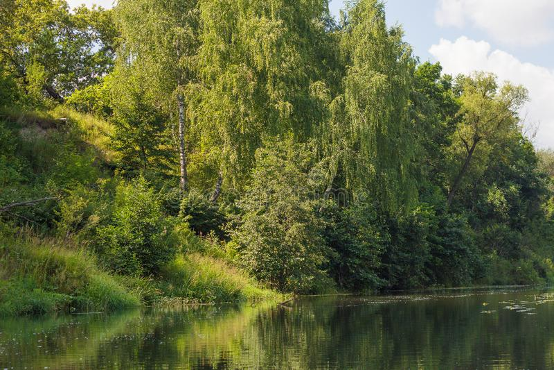 Река Vorona стоковые изображения