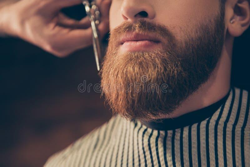 Реклама и концепция парикмахерской Закройте вверх по подрезанному фото a стоковое фото