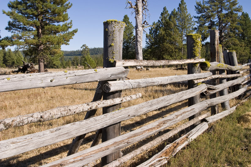 рельсы загородки деревянные стоковая фотография