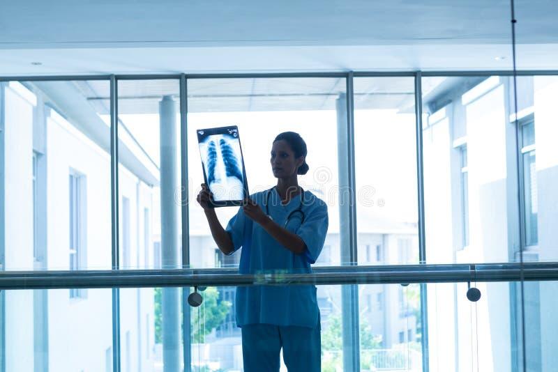 Рентгеновский снимок женского хирурга рассматривая в коридоре на больнице стоковые изображения rf