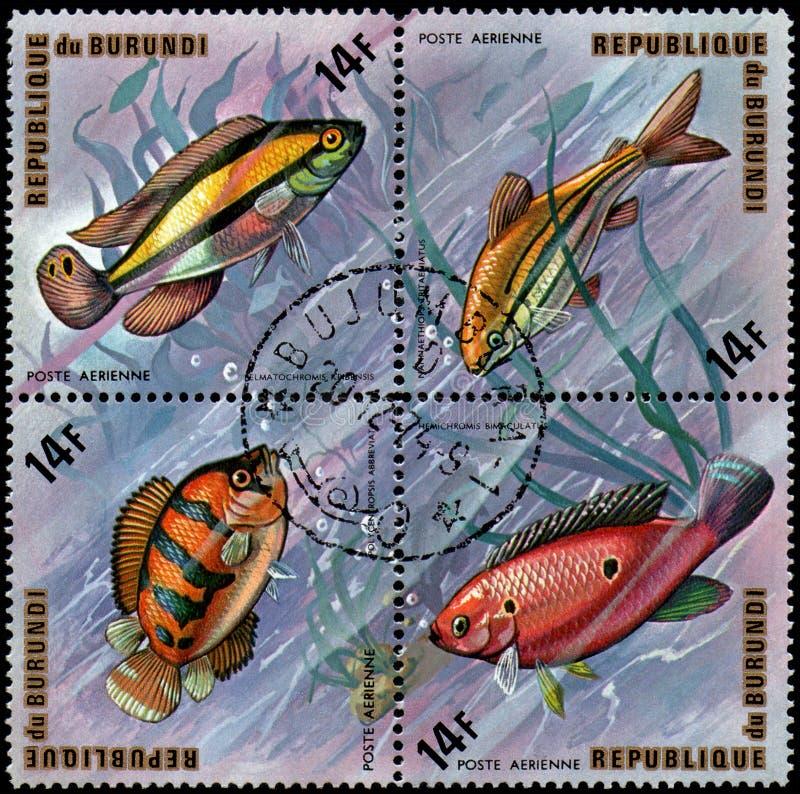 РЕСПУБЛИКА БУРУНДИ - ОКОЛО 1974: штемпеля, напечатанные в Бурунди, sh стоковые изображения