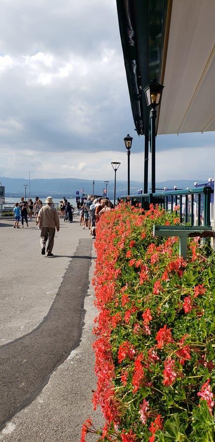 Ресторан Lakeside с цветочным покрытием стоковое изображение