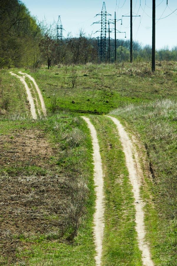 Ретро зеленый лес стоковая фотография rf
