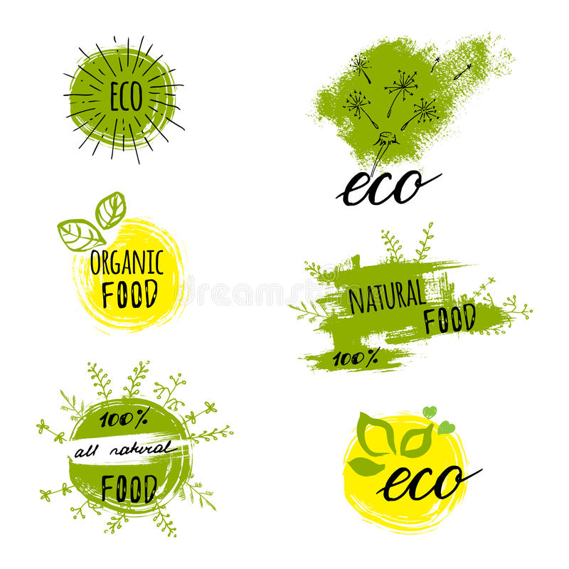 Ретро комплект био, органический, клейковина стиля освобождает, eco, здоровые ярлыки еды Шаблоны логотипа с флористическими и вин иллюстрация штока