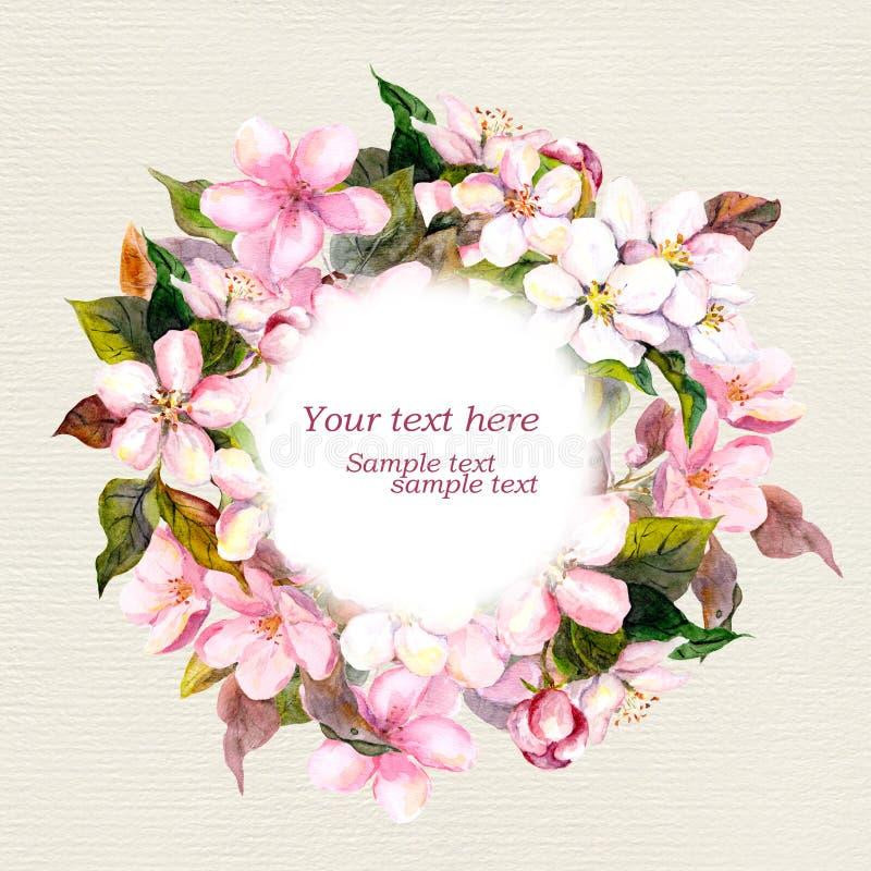 Ретро флористический венок с розовыми цветками - яблоко, вишневый цвет для поздравительной открытки watercolour бесплатная иллюстрация