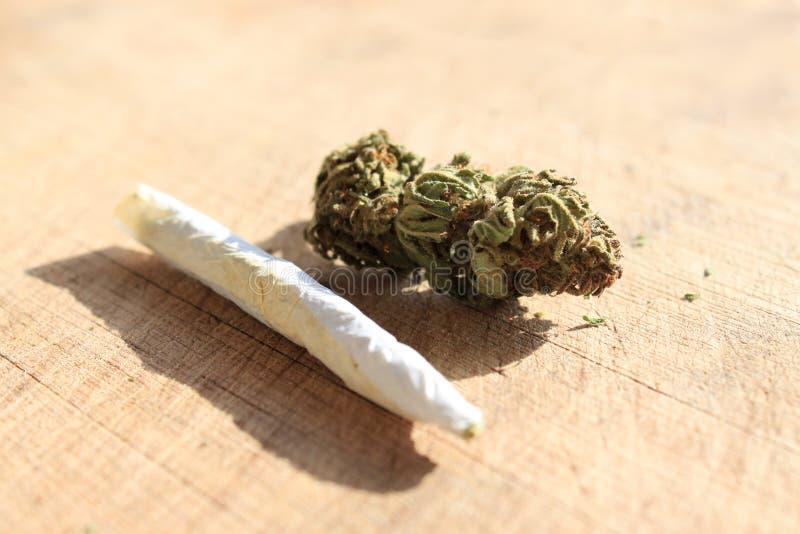 рецепт марихуаны стоковое фото