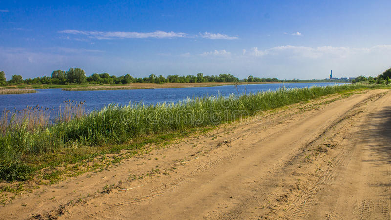 Речной берег в тростниках растя тросточка, песочная дорога вдоль реки стоковая фотография
