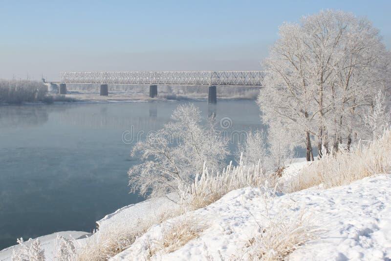 Речной берег Иртыш стоковые изображения rf