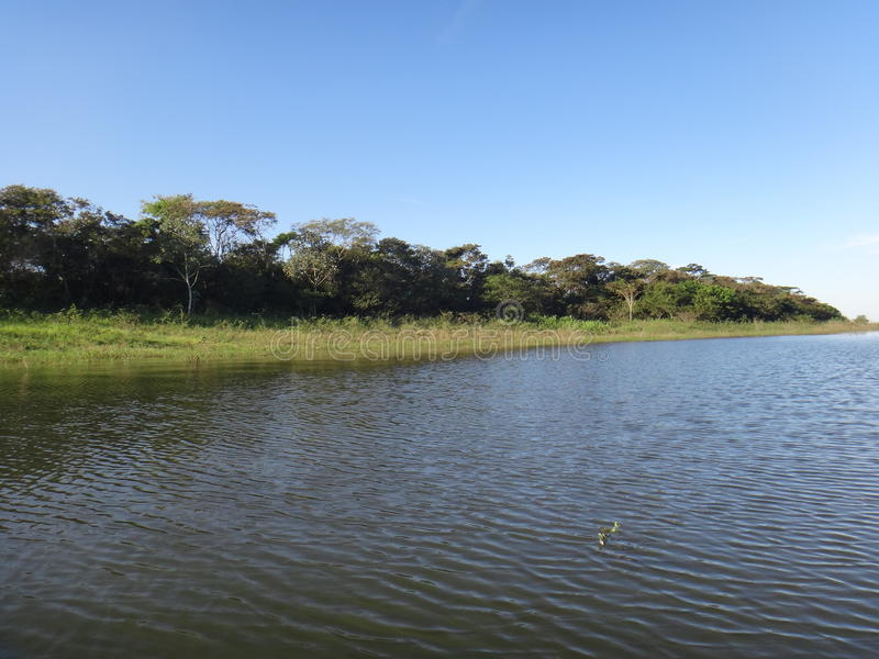 Речной берег стоковое фото