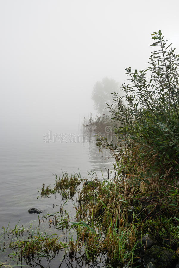 Речные берега на туманном утре стоковая фотография