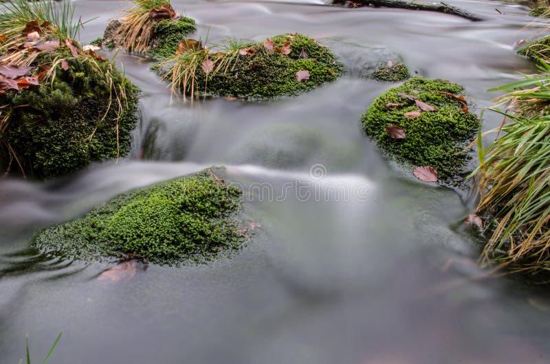 Речные пороги на Jizera стоковое фото rf