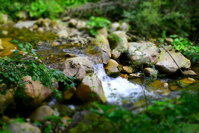 Речные пороги реки горы стоковые изображения