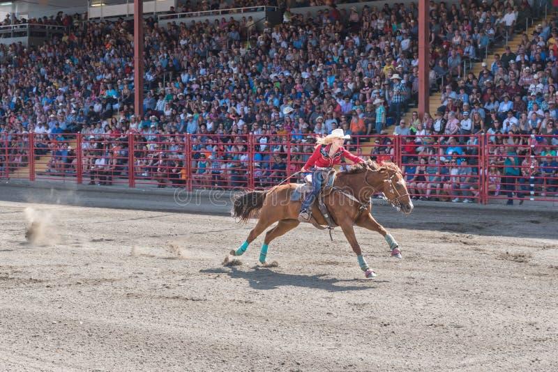 Решительно женщина нажимает лошадь к финишной черте на конкуренции гонок бочонка стоковые фото