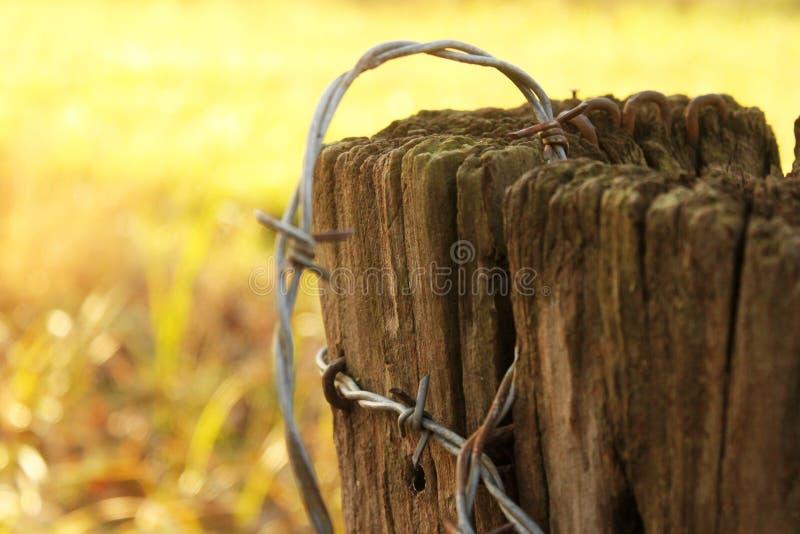 Ржавая колючая проволока на старой пост- очень малой глубине фокуса с предпосылкой осени или зимы желтой стоковые изображения