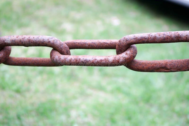 Ржавая окисленная красная старая старая сильная выкованная цепь утюга металла с соединенными связями на предпосылке зеленого цвет стоковые фотографии rf