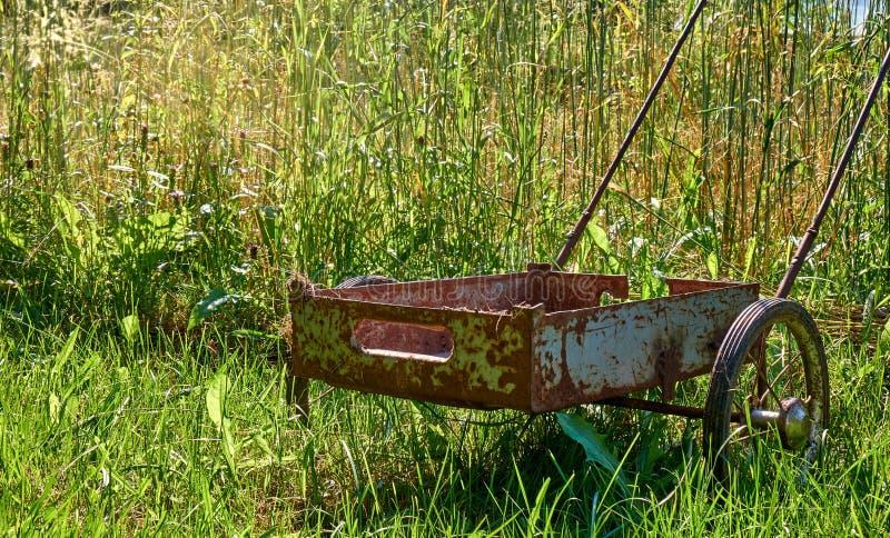 Ржавая тележка на поле золотой пшеницы под предпосылкой сезона сбора солнечного света стоковое изображение