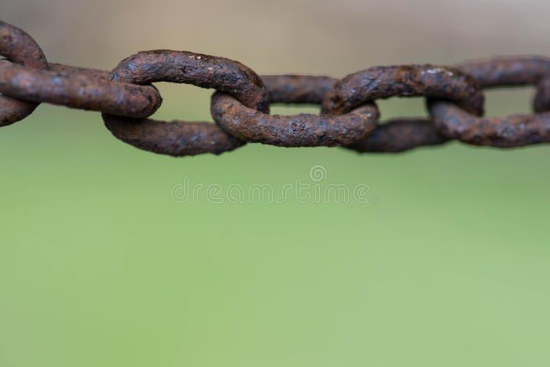 Ржавые звенья цепи закрывают вверх по макросу снятые на зеленой естественной предпосылке стоковая фотография