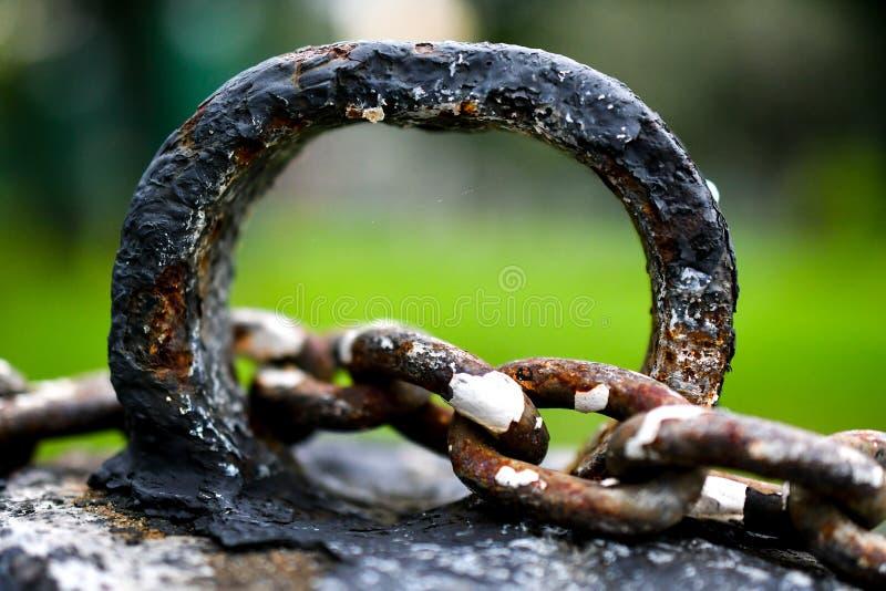 Ржавые цепи металла стоковые фото