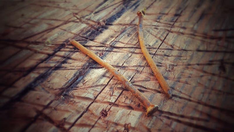 2 ржавых ногтя стоковая фотография