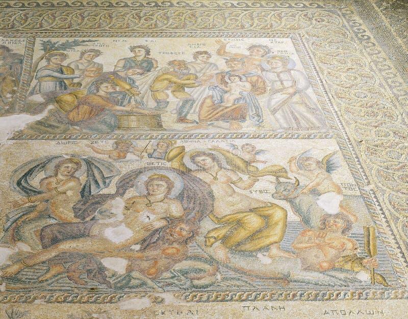 Римские мозаики в доме Aion стоковая фотография
