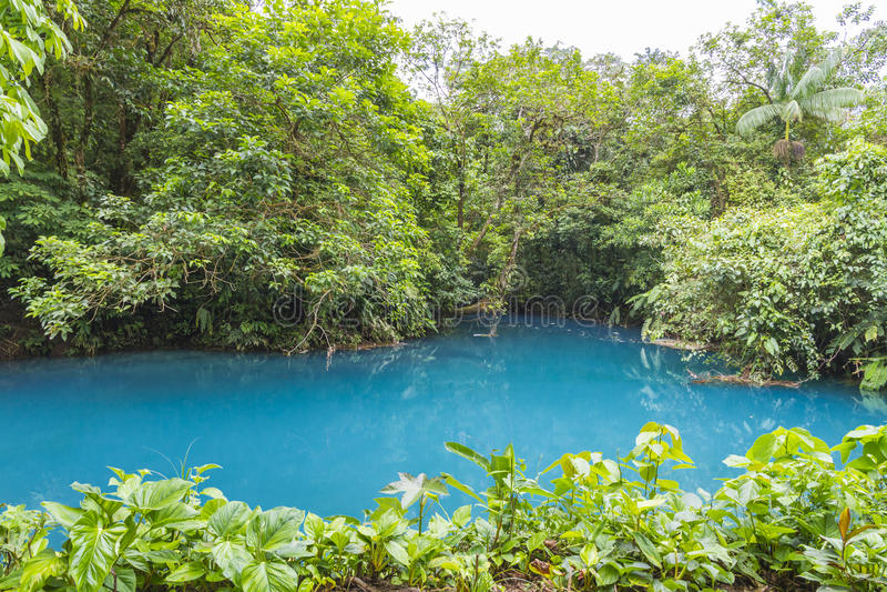 Рио Celeste, национальный парк вулкана Tenorio, Коста-Рика стоковое фото