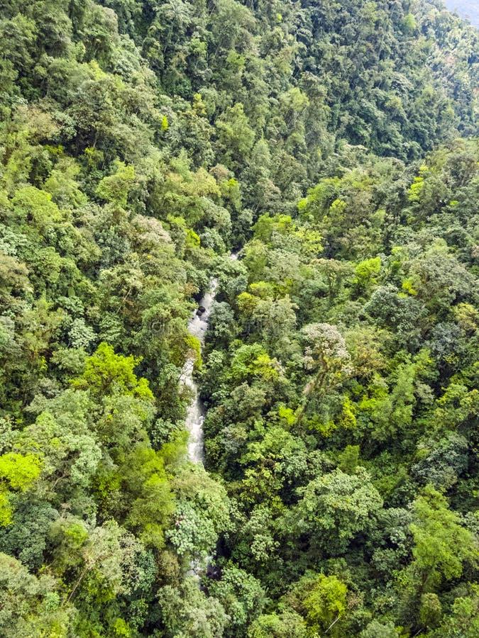 Рио Mindo, западный эквадор, река стоковые фотографии rf