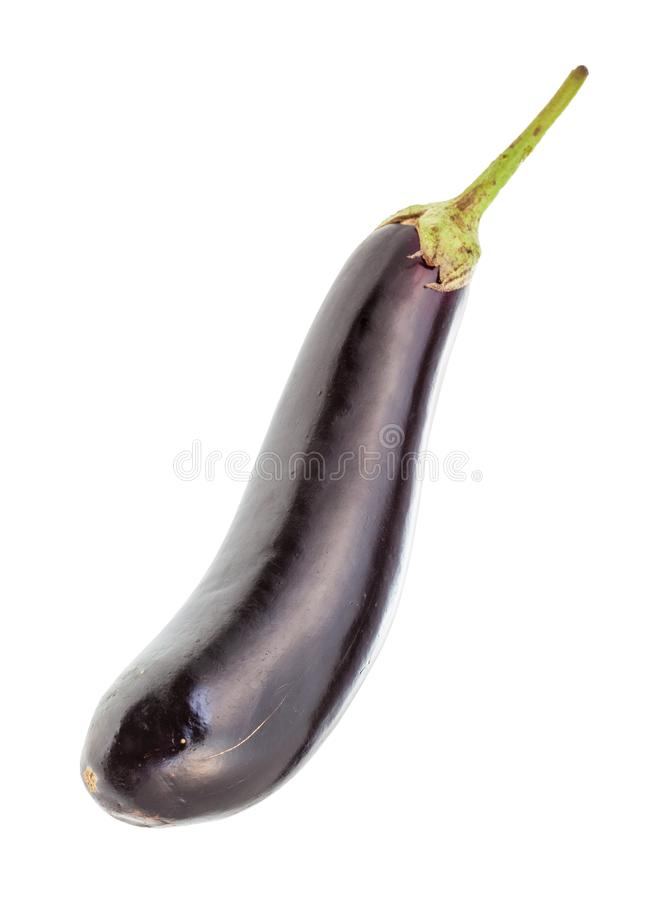 Рип длинный темно-пурпурный эгплан изолирован на белом стоковая фотография