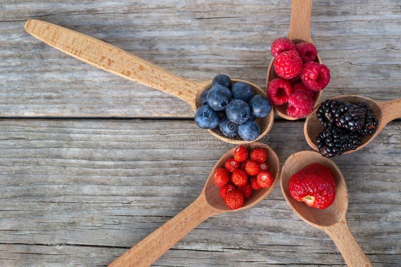 Рип-ягоды в деревянных ложках стоковое фото rf