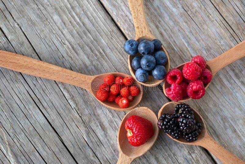 Рип-ягоды в деревянных ложках стоковая фотография rf