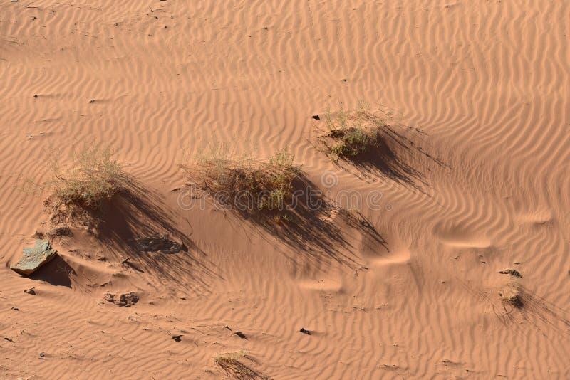 Рисовать в песке стоковые изображения rf