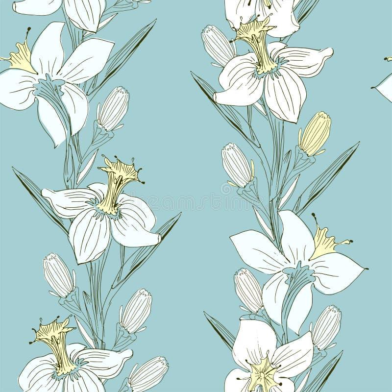 Рисовать Daffodils чувствительный вручную иллюстрация вектора