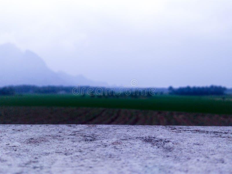 Рисовые поля близко montain стоковые изображения
