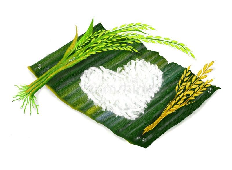 рис жасмина бесплатная иллюстрация