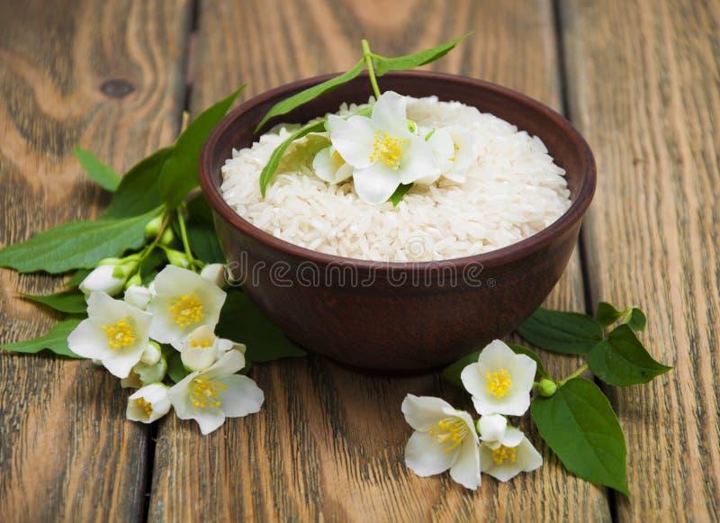 рис жасмина стоковая фотография