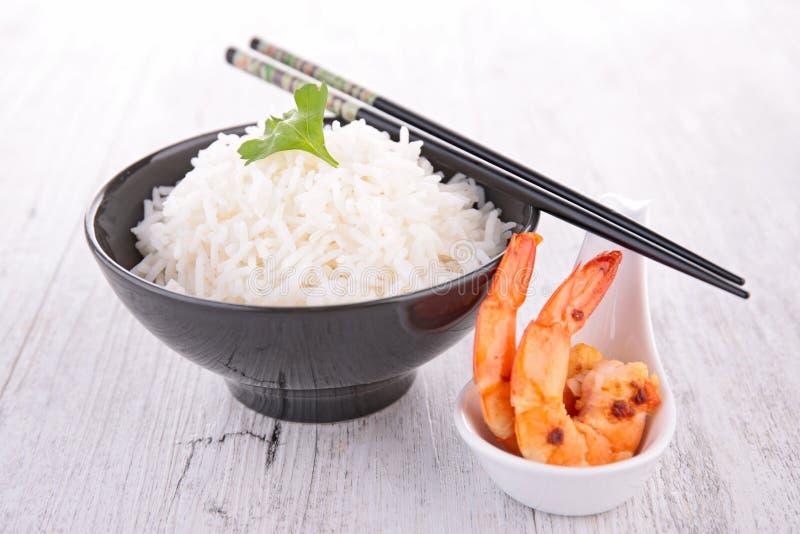 Рис и зажаренная креветка стоковое изображение rf