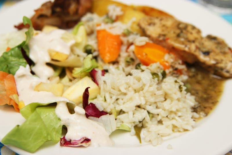 Download Рис и куриная грудка стоковое изображение. изображение насчитывающей мясо - 40582443